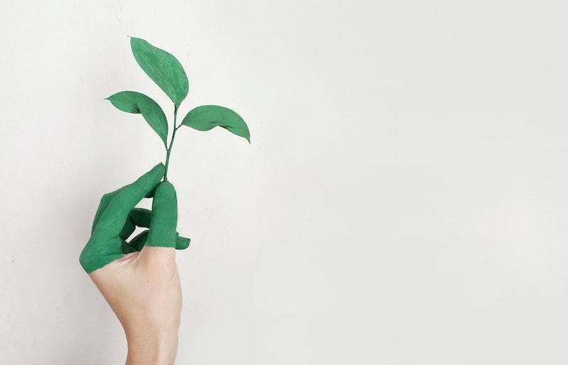 Energy-efficient-new-property