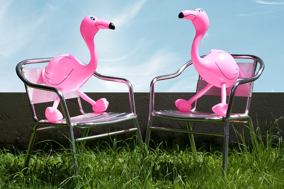 flamingos-on-chairs